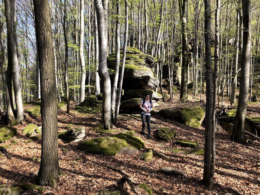 Končitá, boulder