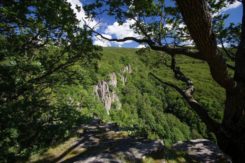Lezecká oblasť Hrádok v Kamenci pod Vtáčnikom neďaleko od Prievidze