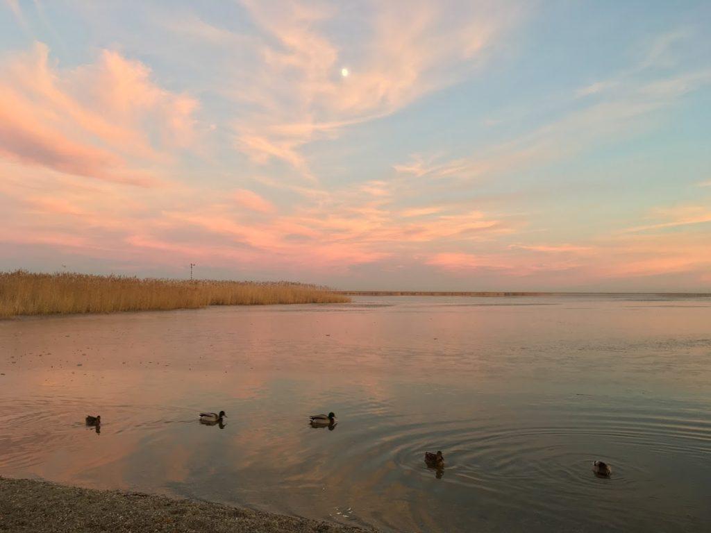 Fertorakos - západ slnka a kačky